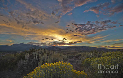 Autumn Sunset Print by Dianne Phelps