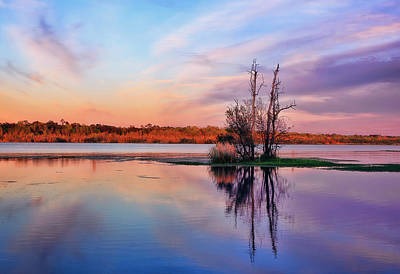 Autumn Sunset In Hanahan Print by Marcia Colelli