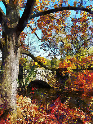 Stream Photograph - Autumn Tree By Small Stone Bridge by Susan Savad