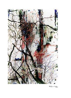 Xoanxo Digital Art - Autumn Tree Composition 3 by Xoanxo Cespon