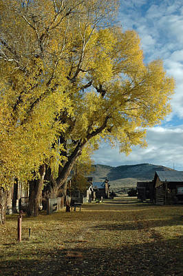 Autumn Trees In Nevada City Montana Print by Bruce Gourley