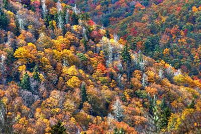 Autumn Trees In The Clouds Blue Ridge Parkway N C Print by Reid Callaway