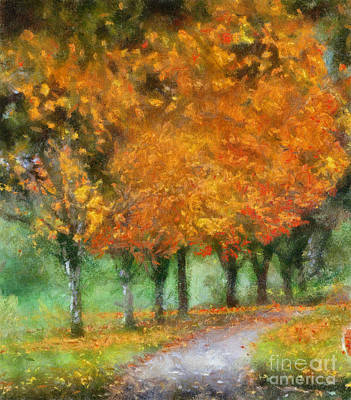 Autumn Photograph - Autumn Trees by Kerri Farley