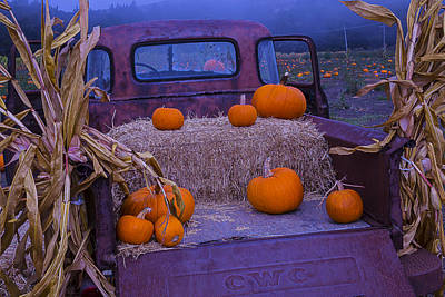 Antique Automobiles Photograph - Autumn Truck by Garry Gay