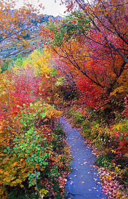 Autumn Walk In Mt Timpanogos Utah Original by Edward Pollick