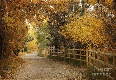 Fallen Leaf Photograph - Autumn Walk by Juli Scalzi