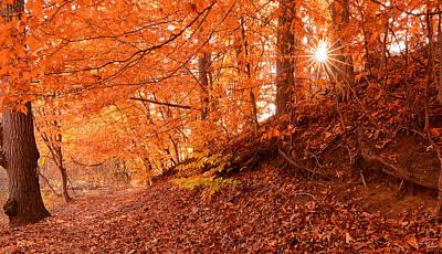 Autumn Walk Print by Lourry Legarde