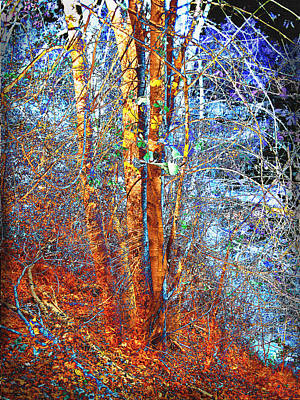 Autumn Scenes Mixed Media - Autumn Woods by Ann Powell