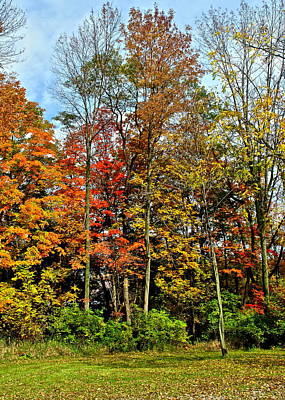 Autumnal Foliage Print by Frozen in Time Fine Art Photography