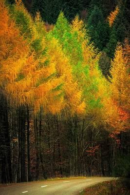Autumnal Road Print by Maciej Markiewicz