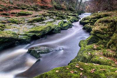 Knaresborough Photograph - Autumnal Strid by Chris Frost