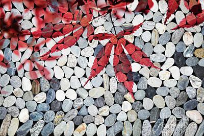 Autumn Scene Photograph - Autumnal Zen by Delphimages Photo Creations