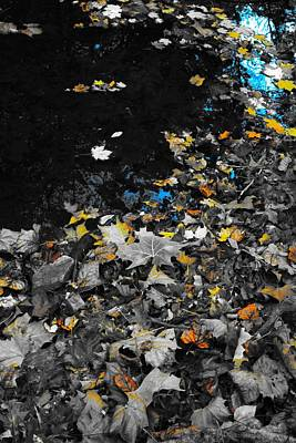 Autumn's Last Color Print by Photographic Arts And Design Studio