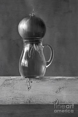 Water Jars Photograph - Awakening by Elena Nosyreva