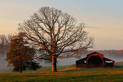 Sunrise Oak Red Barn Misty Morning Print by Reid Callaway