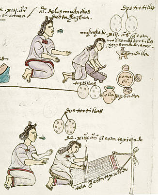 Handloom Drawing - Aztec Daily Life, C1540 by Granger