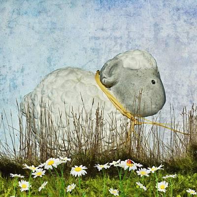 Sheep Mixed Media - Baa by Sharon Lisa Clarke