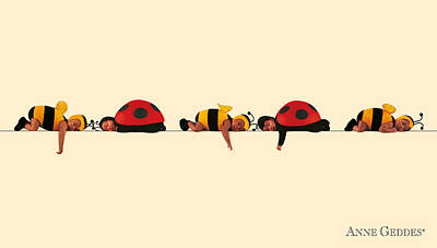 Bug Photograph - Baby Bees And Lady Bugs by Anne Geddes
