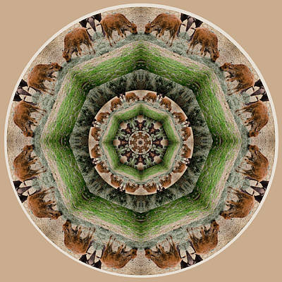 Bison Digital Art - Baby Bison Mandala by Beth Sawickie
