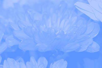 Abstract Forms Digital Art - Baby Blue 1 by Carol Lynch