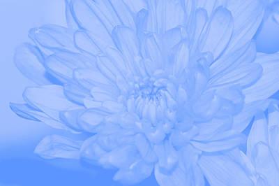 Abstract Forms Digital Art - Baby Blue 3 by Carol Lynch