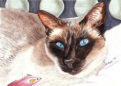 Domestic Short Hair Cat Painting - Baby Blues by Steph Bucci