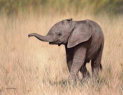 Elephant Calf Painting Print by Rachel Stribbling