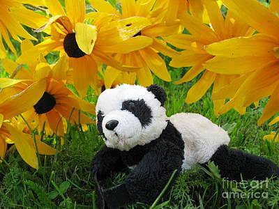 Baby Panda Under The Golden Sky Print by Ausra Huntington nee Paulauskaite