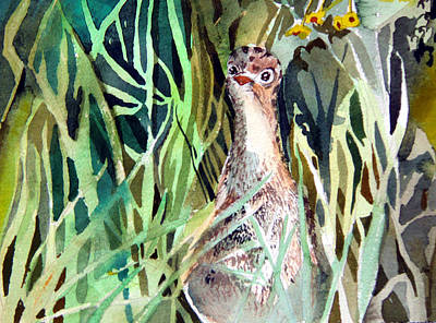 Wild Turkey Drawing - Baby Wild Turkey by Mindy Newman