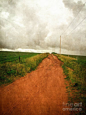 Iron Photograph - Back Country Road Prince Edward Island by Edward Fielding