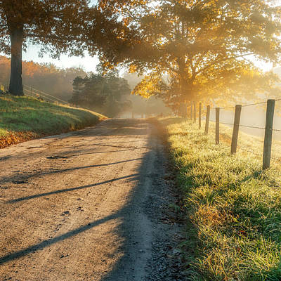 Back Roads Photograph - Back Road Morning Square by Bill Wakeley