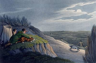 Moonlit Night Drawing - Badger Catching, 1820 by Henry Thomas Alken
