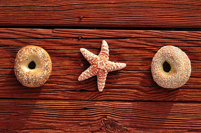 In A Row Photograph - Everything Bagel by Laura Fasulo