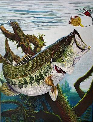 Bass Fishing Drawing - Baiting The Big One by Bruce Bley