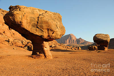 Balanced Rock Below Vermilion Cliffs Print by Gary Whitton