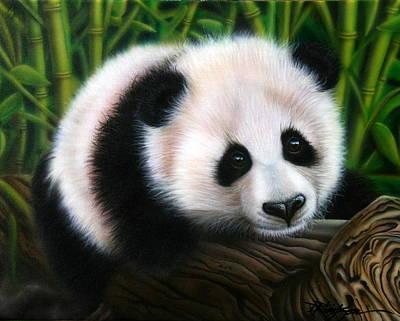 Panda Bear Painting - Balancing Act by Darren Robinson