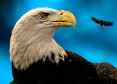 Bald Eagle And Fledgling  Print by Bob Orsillo