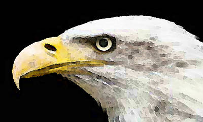 American Eagle Painting - Bald Eagle By Sharon Cummings by William Patrick