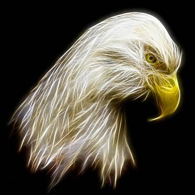 Fractal Photograph - Bald Eagle Fractal by Adam Romanowicz