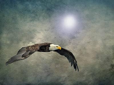 Bald Eagle Textured Art Print by David Dehner
