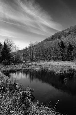 Bald Mountain Pond In October Print by David Patterson
