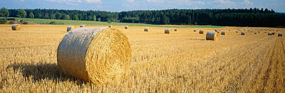 Bales Of Hay Southern Germany Print by Panoramic Images