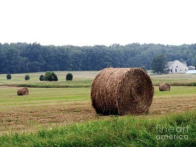 Solebury Photograph - Bales In Solebury by Christopher Plummer