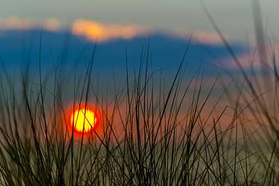 Oats Photograph - Ball Of Fire by Sebastian Musial