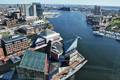 Baltimore Harbor Print by Andrew Dinh