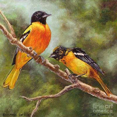 Oriole Painting - Baltimore Orioles by Tom Chapman