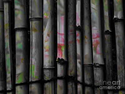 Bamboo Blossom Print by Charles Majewski