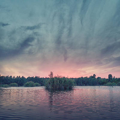 Twilight Views Photograph - Bamboo Lake by Stelios Kleanthous