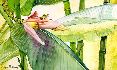 Banana Bloom Original by Lyse Anthony