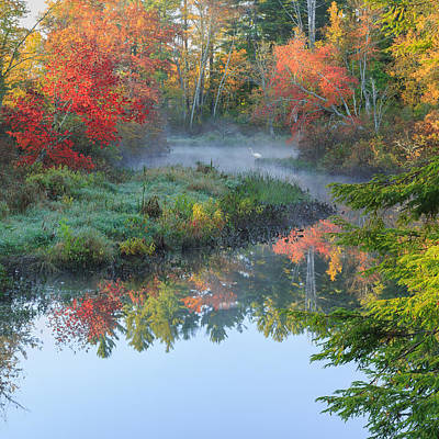 Bantam River Autumn Square Print by Bill Wakeley